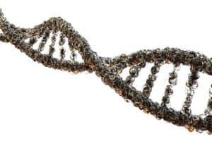 DNA RF Radiation Damage